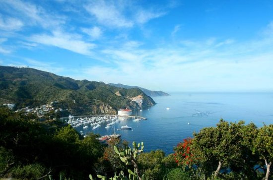 Catalina Island from Anaheim or Los Angeles with Upgrades