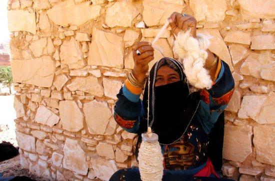 Expérience du désert égyptien: le...