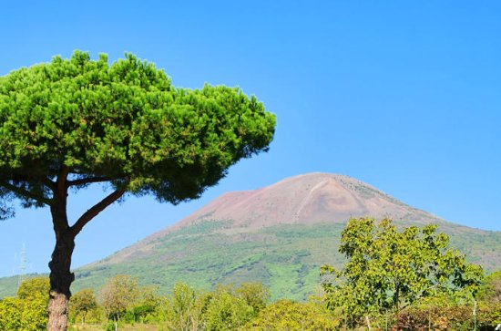 Mt Vesuvius Tour fra Sorrento