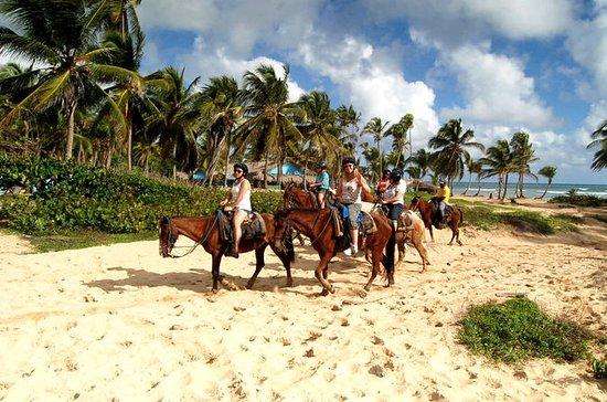Horseback Riding Adventure Punta Cana