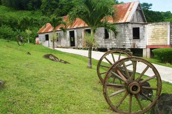 Belmont Estate Cocoa Heritage Tour