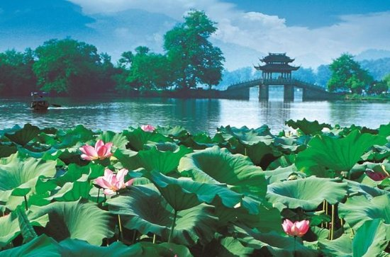 Hangzhou City Tour: West Lake Cruise and Lingyin Temple with Lunch