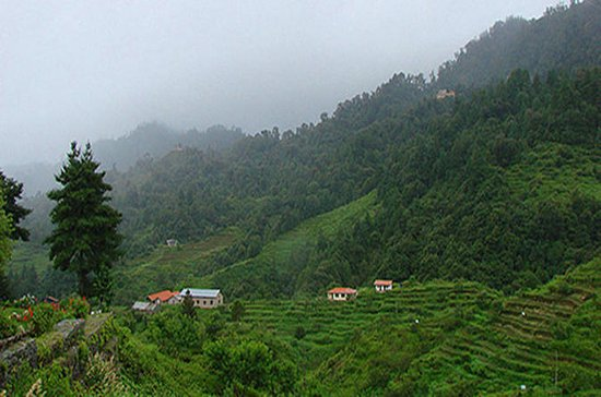 Private Daman Village Day Trip from ...