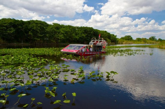 Everglades Air Boat and Alligator...