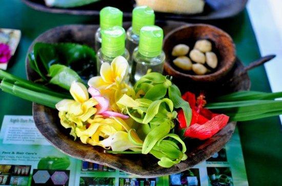 Traditional Bali Medicine Half-Day ...