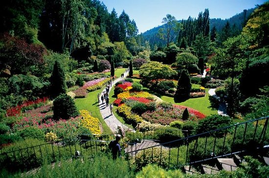 Victoria and Butchart Gardens Tour ...