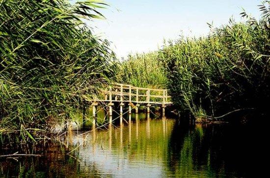 Azraq Wetland Private Half Day Tour...