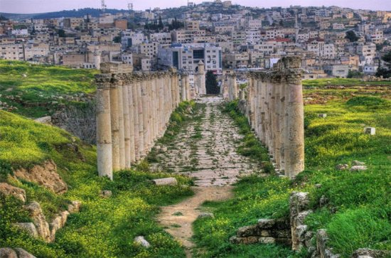 Private Jerash Half Day Tour from Dead...