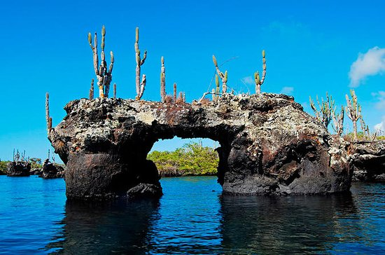 6-Day Galapagos Land Tour: Los...
