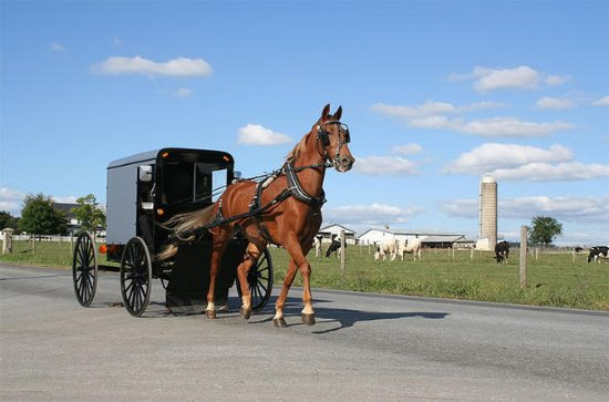 4-Day Amish Experience from New...