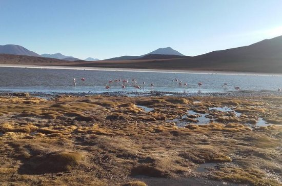 Salar de Uyuni 3-Day Tour with...