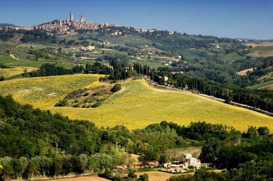 Siena and San Gimignano Day Trip from...