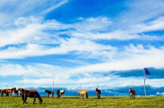 Excursión de 8 días: sabor de Mongolia