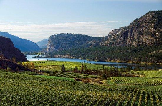 Niagara Region Private Winery Tour