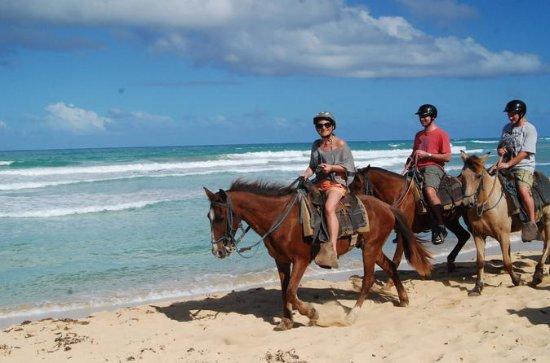2-Hour Horseback Riding Adventure...