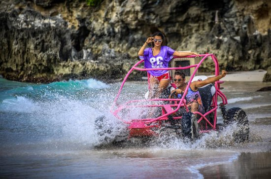 Punta Cana Dune Buggy Ride and...