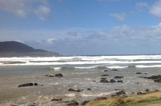 Private Bruny Island Nature Day Trip...