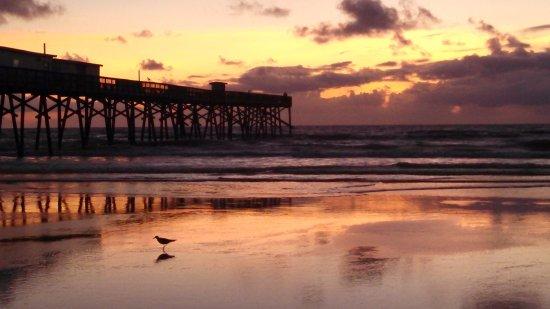 Pier picture of sunglow fishing pier daytona beach for Sunglow fishing pier