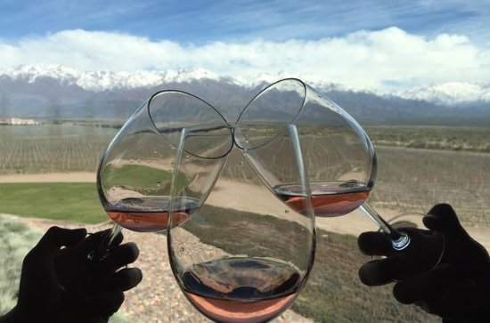 Excursão privada: região vinícola de...