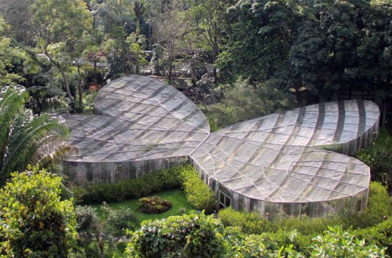 Private Tour: Botanical Garden and...