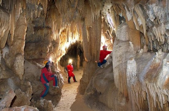 Grotte di Castellana Guided Tour from ...