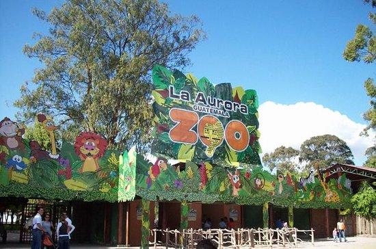 La Aurora Zoo Toegangsbewijs en ...