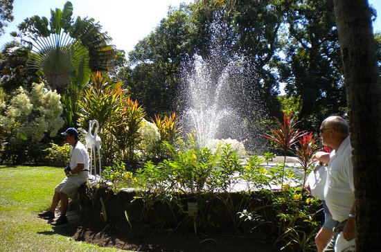 St Kitts Rosevelt Special Sightseeing...