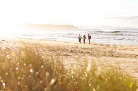 3-Day Small Group Bruny Island Guided...