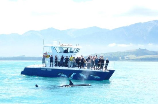 3-Day Auckland to Bay of Islands