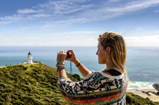 3-dagers Auckland til Paihia returtur