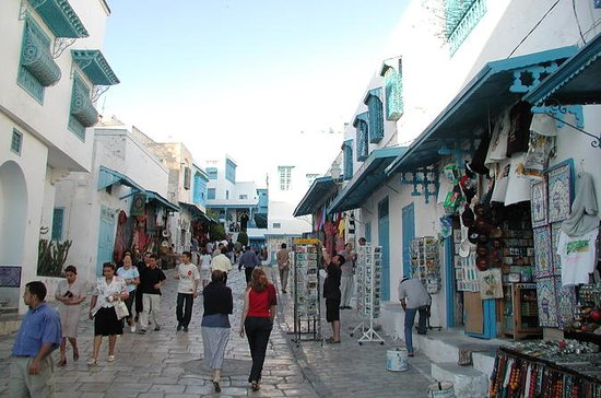 Carthago en Sidi Bou Said Halve dag ...