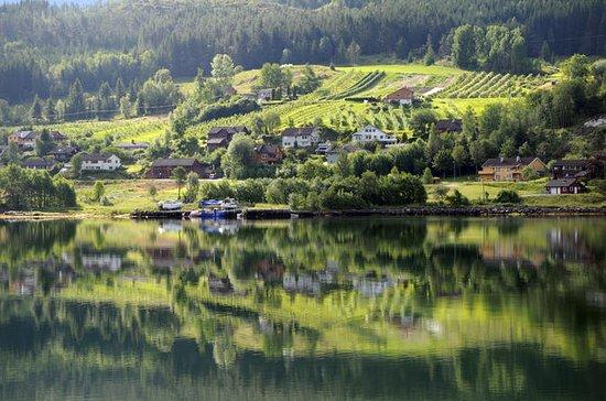 Escapada de un día a Hardangerfjord...