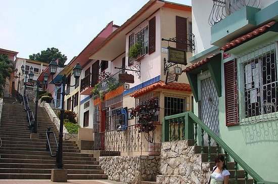 Private Guayaquil City Tour Including...