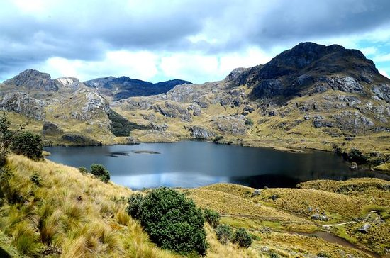 Private Hiking Adventure in El Cajas