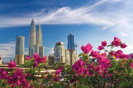 Visite d'une demi-journée à Kuala...