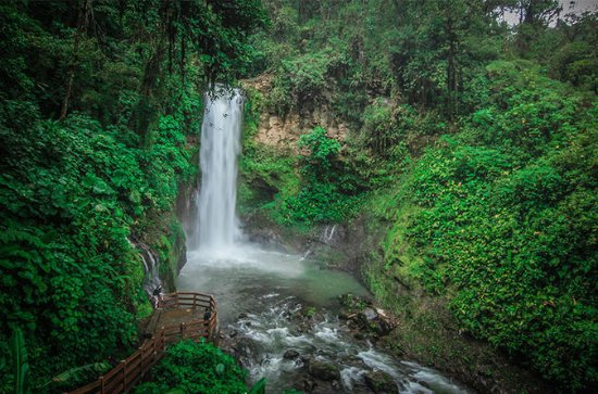 San Jose to La Paz Waterfall Gardens...
