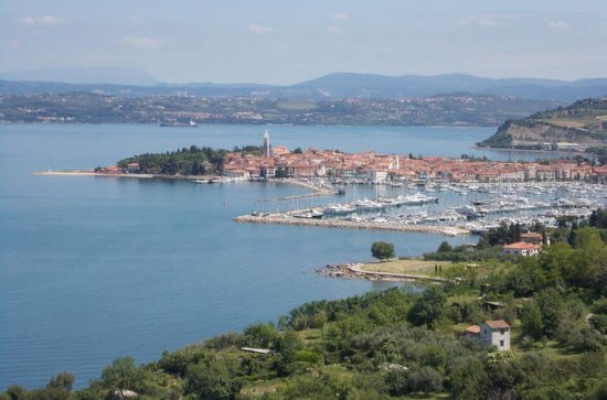 Izola Private Walking Tour