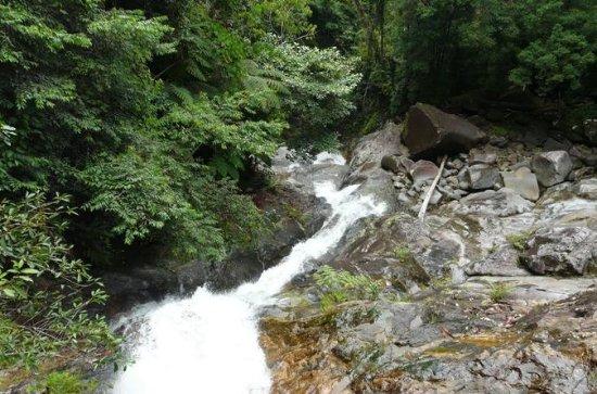 Dia de viagem para Gunung Gading...