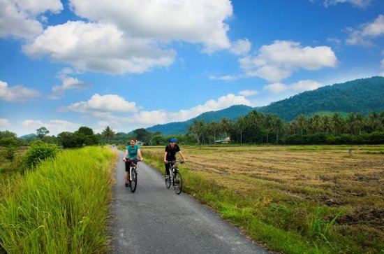 Half-Day Guided Bicycle Tour of...
