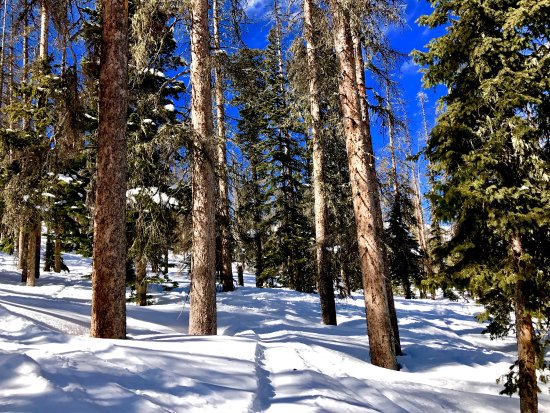 Pagosa Springs, CO: photo4.jpg