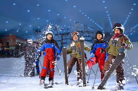Dubai City Tour and Snow Park Combo