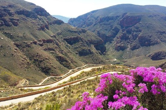 Half-Day Swartberg Pass Tour from...