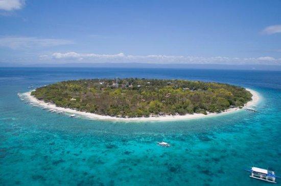 Balicasag und Panglao Island Hopping...
