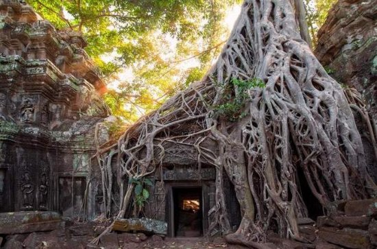Tour of Banteay Kdei and Ta Prohm