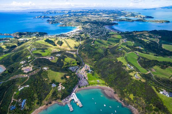 Private Shore Excursion: Waiheke...
