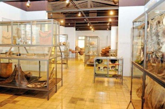 Private Seven Museums of Asunción...