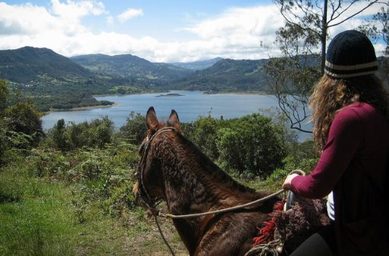 Half-Day of Horseback Riding along...
