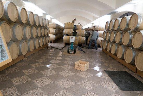 Château Haut-Marbuzet - Henri Duboscq: storage&ageing