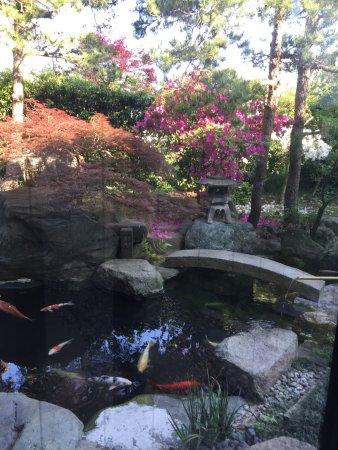 Kahoku, Japan: photo6.jpg