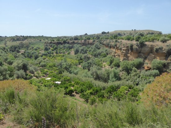Il Giardino della Kolymbetra: The gardens are located in a long gorge